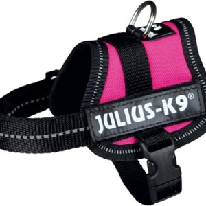 Julius k9 power-harnas / tuig voor labels fuchsia