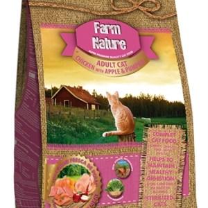 Farm nature chicken / apple / pumpkin