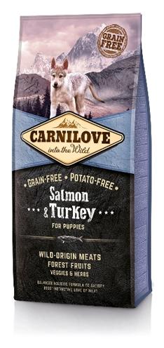 Carnilove salmon / turkey puppies