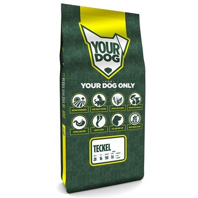 Yourdog dashond pup