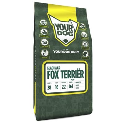 Yourdog fox terriËr gladhaar pup