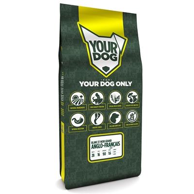 Yourdog grand anglo-franÇais blanc et noir pup