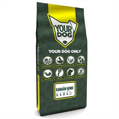 Yourdog kanaÄn hond pup