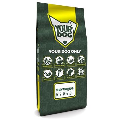 Yourdog silken windhound pup