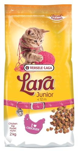 Lara kitten
