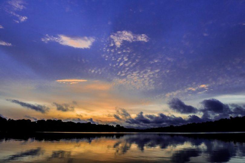 Amazonas Turismo