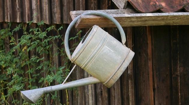 Bewässerung für den Garten automatisieren
