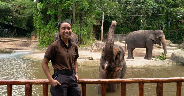 Singapore Zoo's First Female Elephant Keeper On Why Not All Zoos Are Prisons: Nursyafiqah Mohamed Yusof