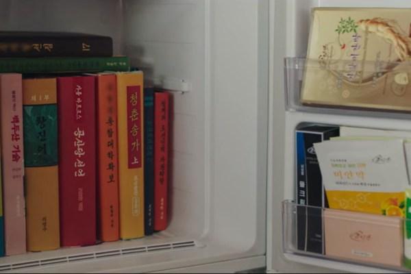 fridge north korea