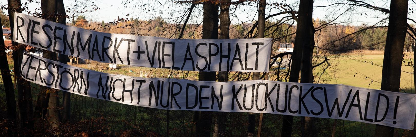 Transparent Kuckuckswald