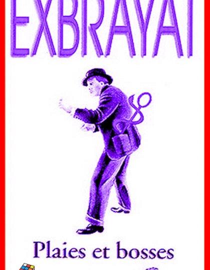 Charles Exbrayat - Plaies et bosses