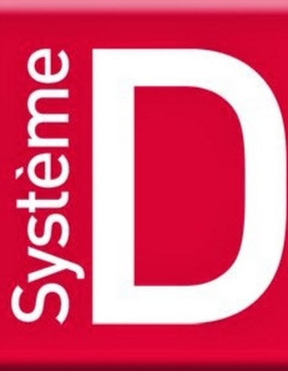 Systeme D - Full year 2016