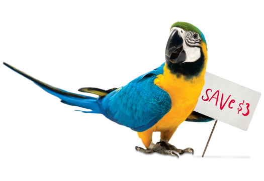Save on Parrot Food