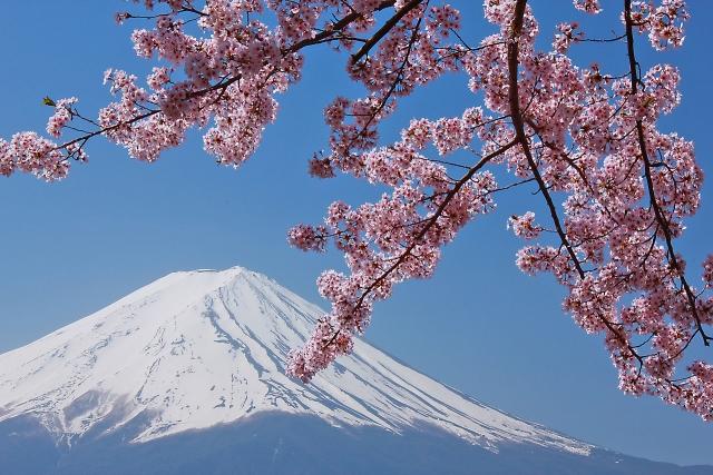 NHKのドラマ富士ファミリーでの片桐はいりの演技力はスゴすぎる!