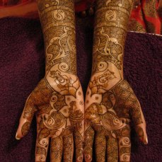 Mehndi design by Karuna 14