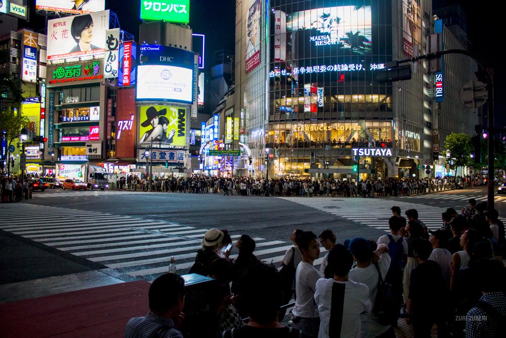 Zuri_Zuberi_Tokyo_by_night_1