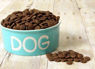 Sausas maistas šunims