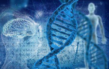 Gizakion DNA eta osasun burujabetza jakean