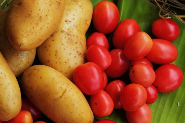 Цены на картофель подросли, на помидоры – снизились