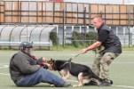 ukazka-policajneho-psa-4