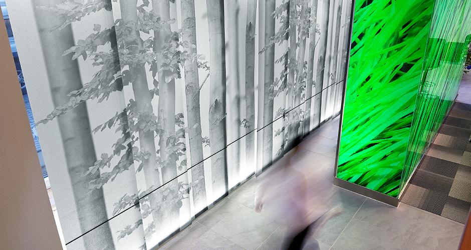 Volksbank Amberg Vorhang und Leuchtkasten