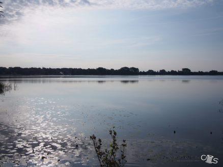 Nochmal Ausblick auf den See bei Tag