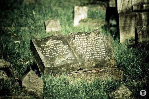 cemetery 07