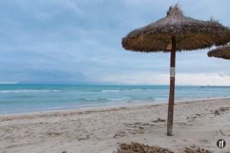 Bucht von Alcudia - Sonnenschirm