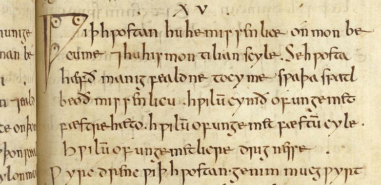 medicina nel medioevo estratto medicinale anglicum