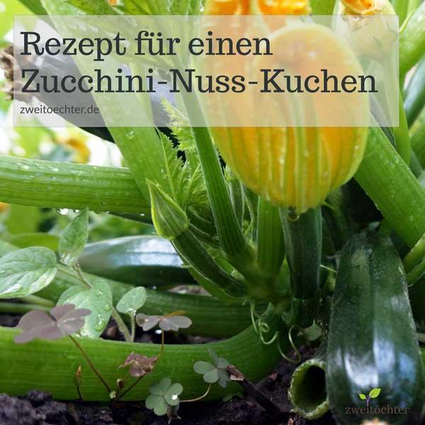 zucchinikuchen