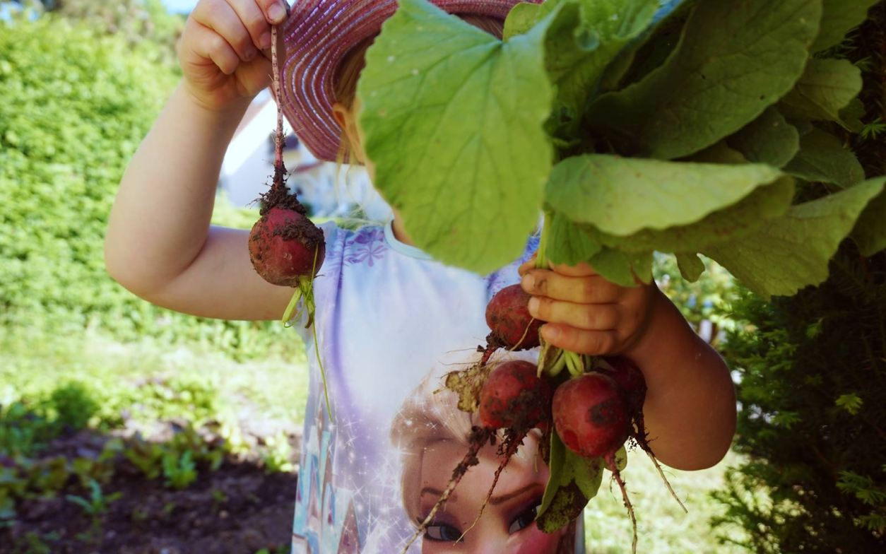 Bekannt Kindern spielerisch die Obst- und Gemüsearten beibringen - zweitöchter PJ45