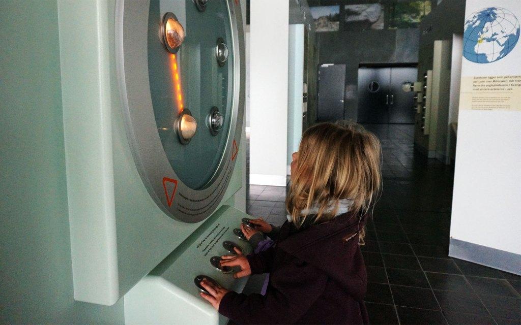 Freilerner-Gemeinschaft auf Bornholm im Naturkundemuseum