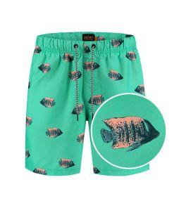 turquoise koningsvis zwembroek