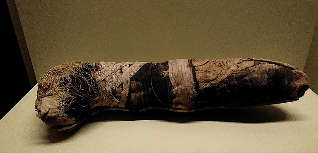 Mumifiziertes Tier aus dem alten Ägypten