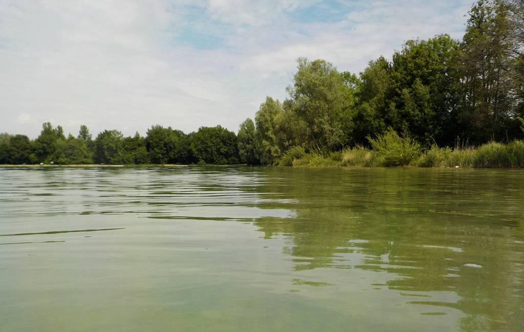 Grünes Wasser, grün am Ufer