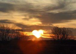 Znalezione obrazy dla zapytania prostota serca