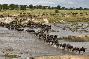 Parki narodowe w Afryce