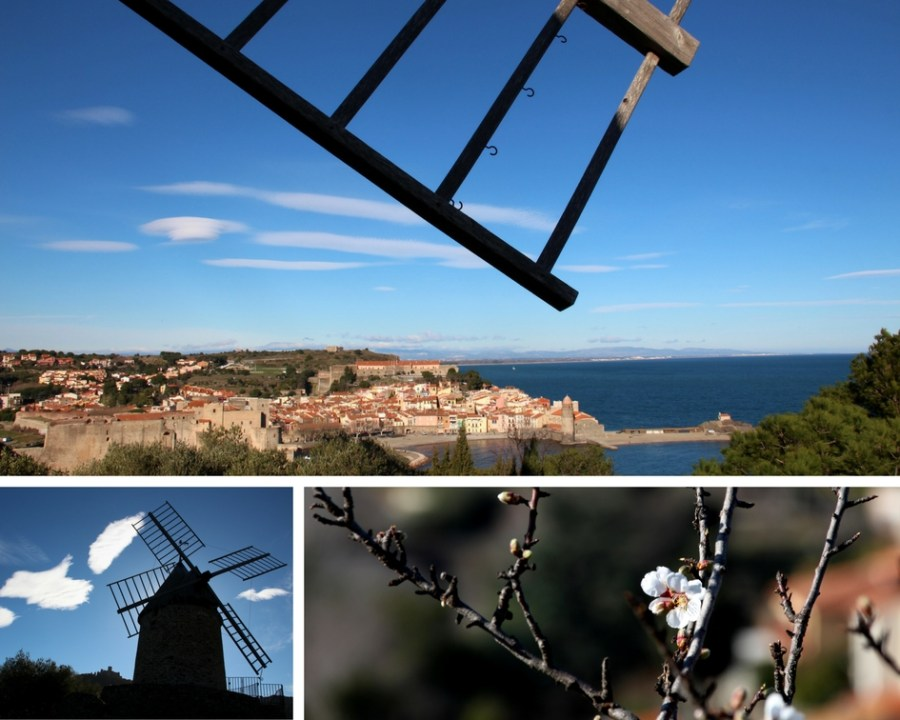 Collioure Sehenswürdigkeiten: Ausblick von der alten Mühle.