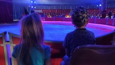 Die Kinder konnten es kaum erwarten. Sie waren noch nie im Zirkus.