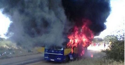 Zanu PF officials jailed for burning ZUPCO bus, Webster Shamu wife's vehicle