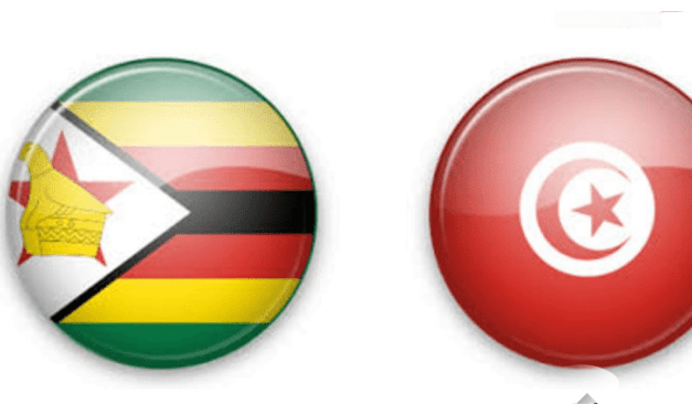 Zimbabwe Warriors vs Tunisia, Afcon 2017, squads, possible line up, kick off time