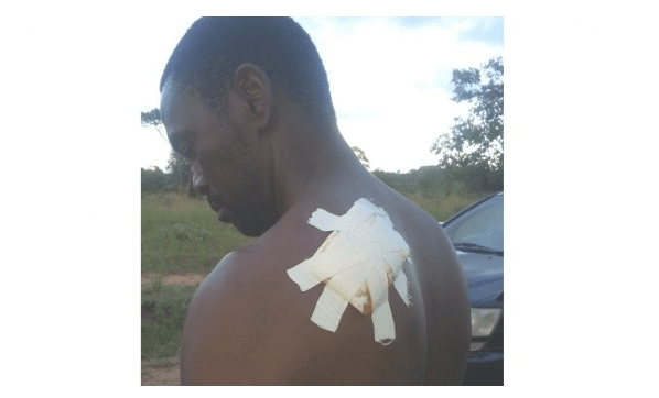 Notorious tree cutter axes chief