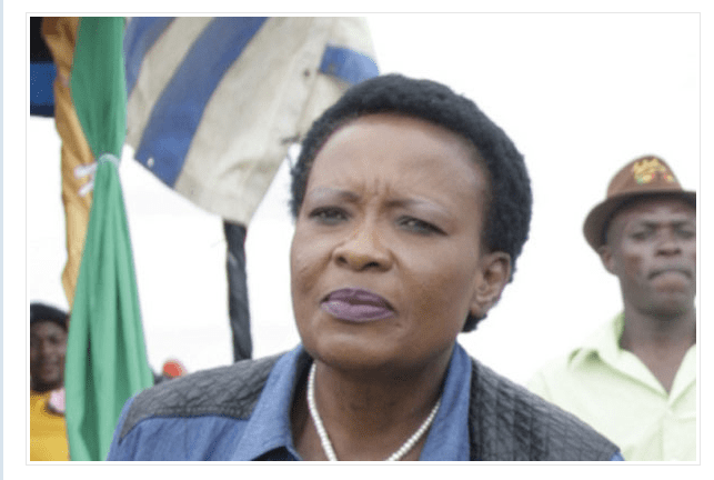 Police boss wades into Zim First Lady Kwekwe accident controversy