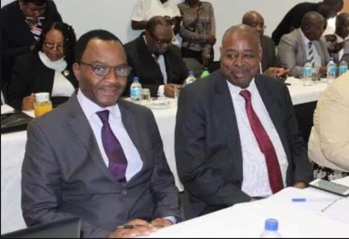 Maridadi was always Zanu PF? Chamisa warned of ED spies in MDC