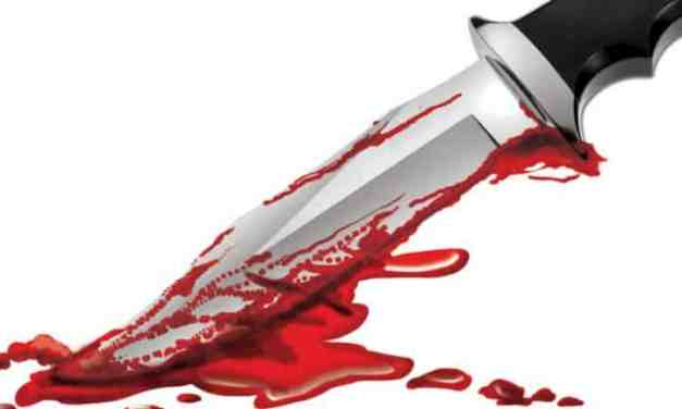 Joburg pupil stabbed to death by classmate, another collapses and dies at school