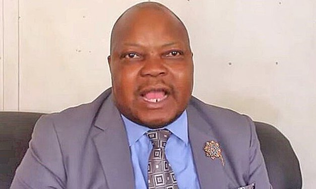Mnangagwa hates me and I don't like him as well- Job Sikhala