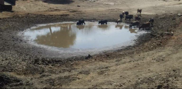 ZINWA scoops Mt Darwin Dam to mitigate water crisis
