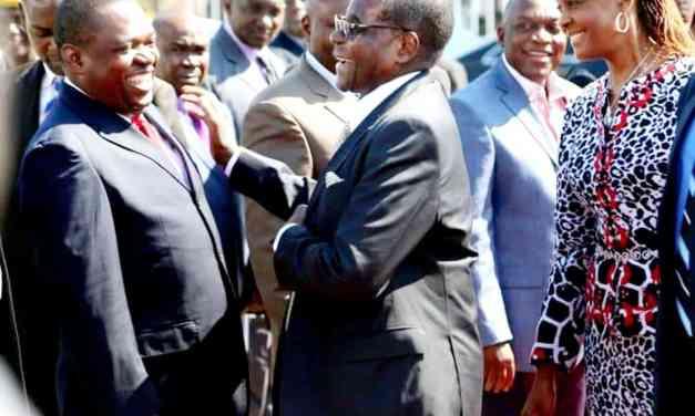 You hated Mugabe for no reason, says former Zanu legislator fired by ED