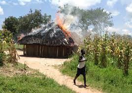 Buhera twins (6) burnt to death in hut inferno
