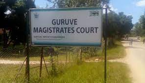 Guruve RDC CEO granted ZW$10 000 bail on criminal abuse of office charges